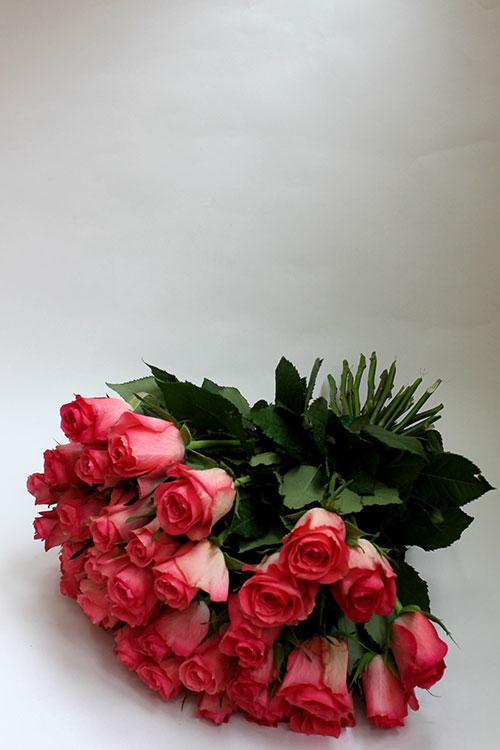букет с 35 розовыми розами