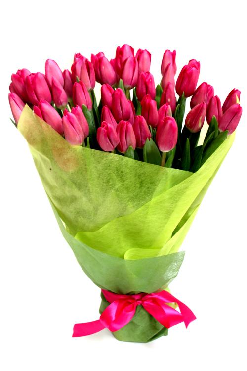 Малиновые тюльпаны в упаковке