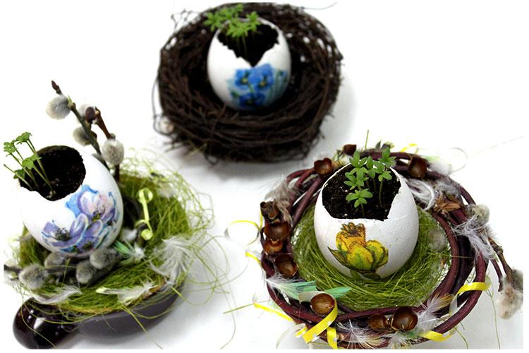 Яйца в гнездах