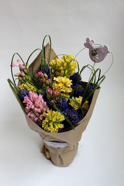 25 разноцветных гиацинтов