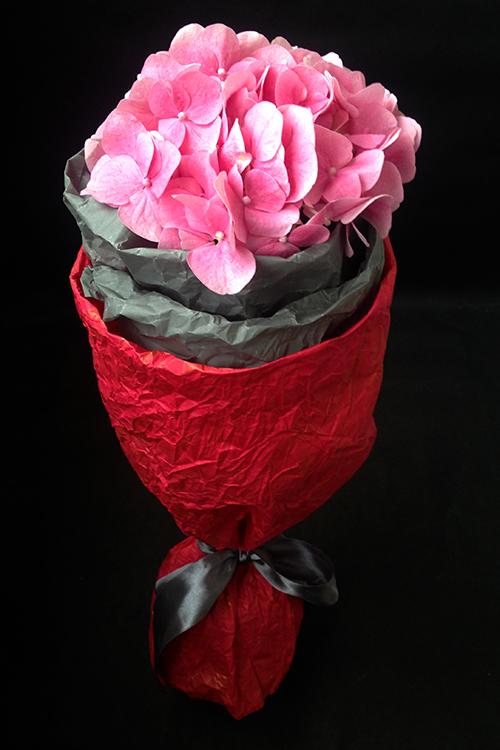 Гортензия розовая в упаковке
