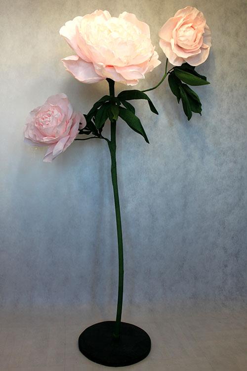 Аренда большого розового пиона на стойке