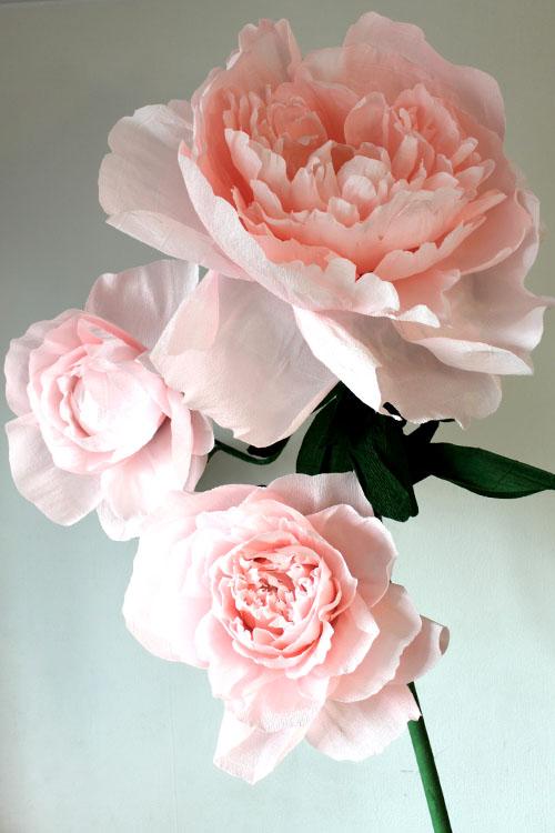 Большой розовый пион из бумаги в аренду