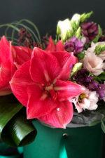 Амариллис – цветок любви.