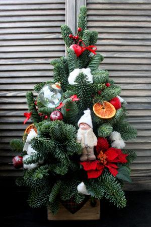 Елочка из пихты с пуансеттией, хлопком и апельсинами