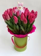 Коробка с 50 темно-розовыми тюльпанами и игрушкой.