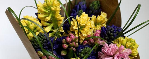 Цветы весны! Великолепные гиацинты!
