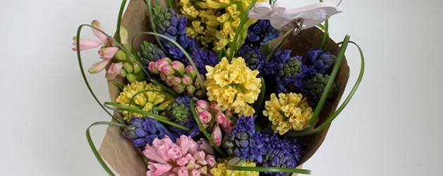 Что делать с флористическими композициями из луковичных , после того как они отцвели?