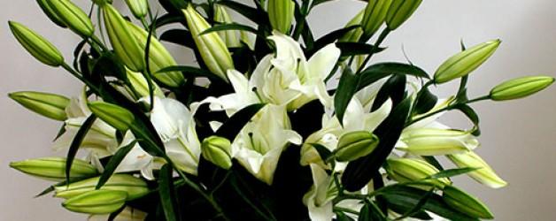 «Льняная свадьба»- четвертая годовщина семейной жизни!