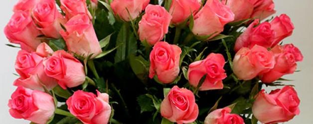 Розы розовые. Значение.