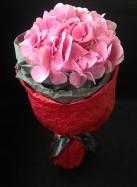 Букет из одной розовой гортензии.