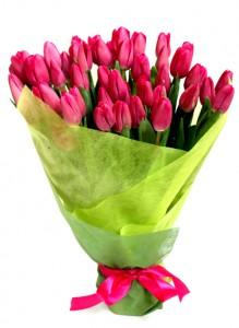 Букет из 50-ти тюльпанов тёмно-розового цвета.