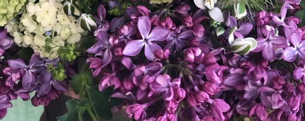 Цветы сирени в композициях