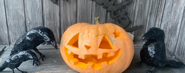 Мастер-класс по созданию композиции в тыкве к Хеллоуину.