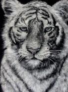 """Портрет из тополиного пуха """"Тигр"""""""